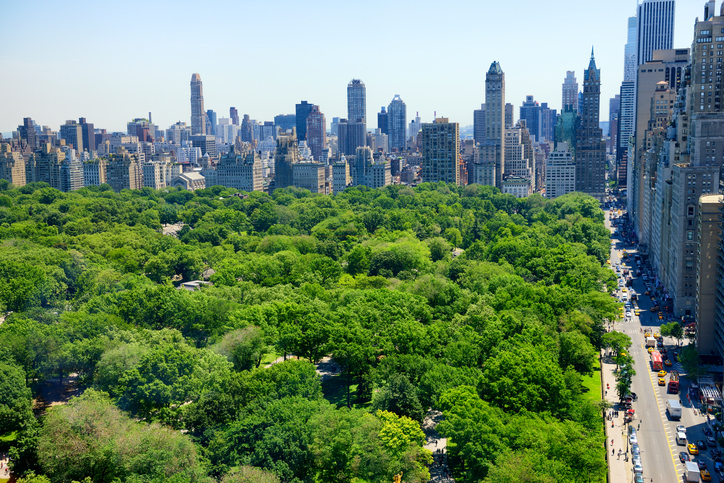 how big is central park actually sparefoot moving guides