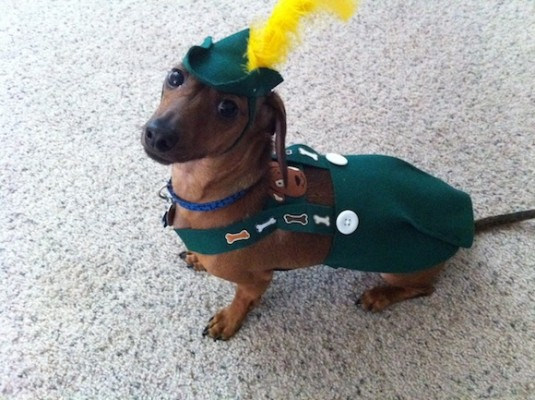Bootsy in Lederhosen, ready for the world.