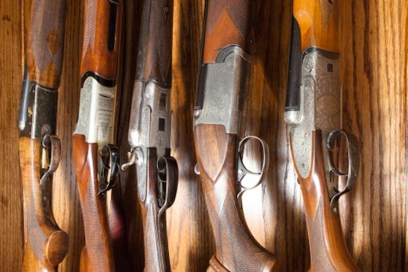 firearms storage