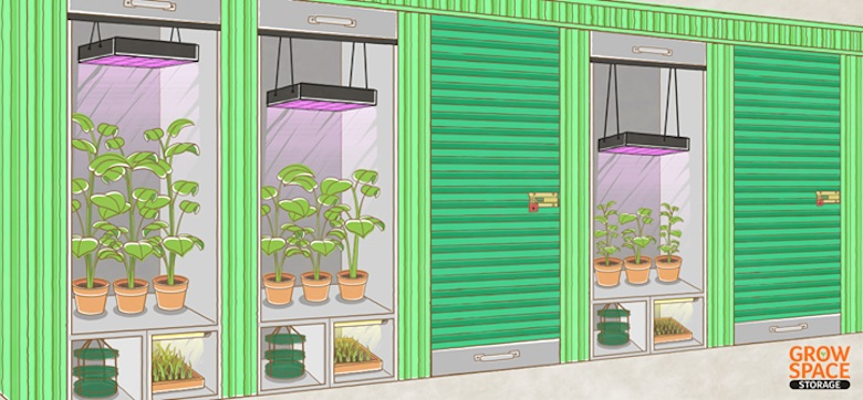 Grow Space Storage will provide self-contained pods designed for growing marijuana.